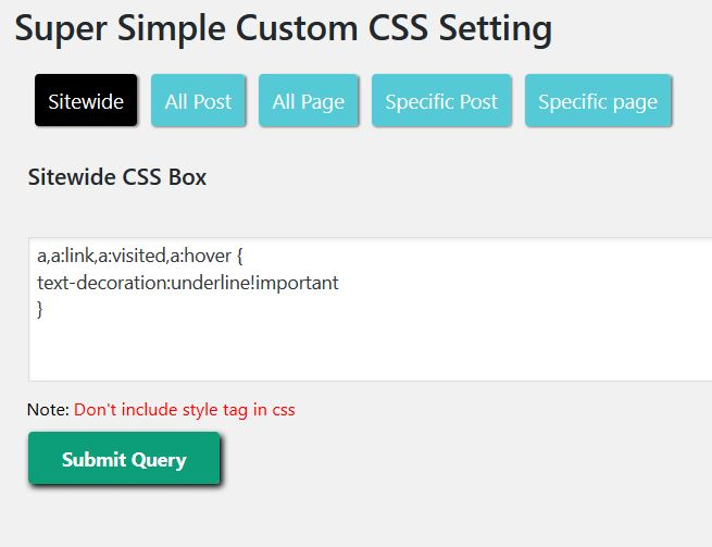Custom CSS Settings