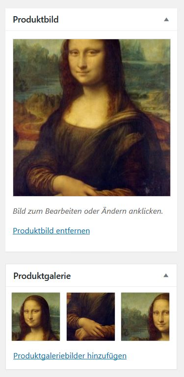 Produktbild und Galerie
