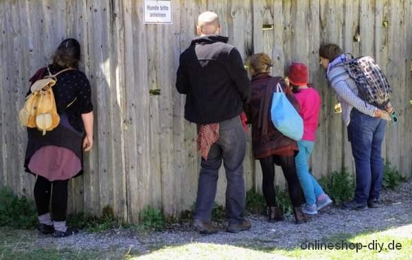 Neugierige Personen blicken durch Schlitze im Zaun