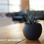 7 Tricks für Twenty Seventeen