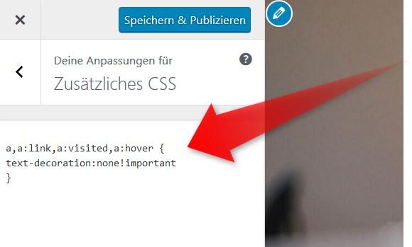 CSS im Customizer bearbeiten