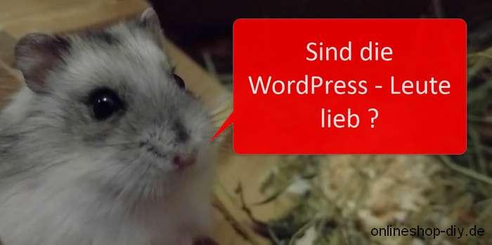 Die WordPress-Community trifft sich auf Meetups und WordCamps
