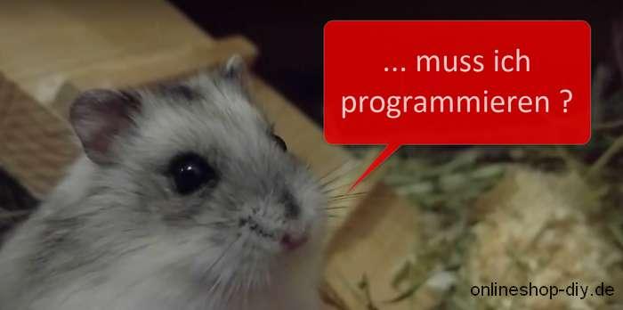 Muss ich programmieren können?
