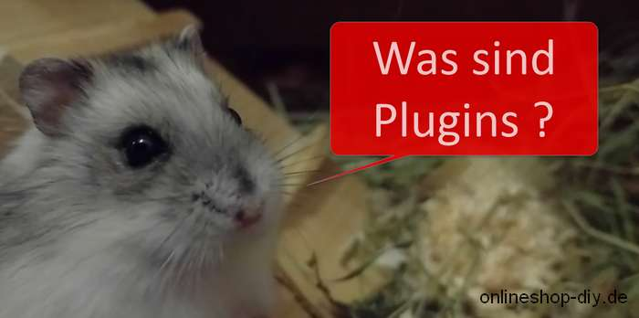 Was sind Plugins?